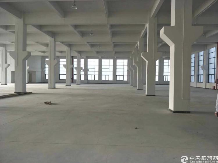大朗大型工业区空出一楼2000