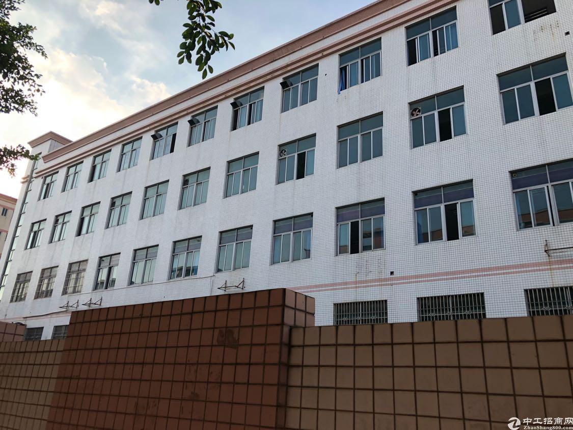 沙井共和原房东厂房6600平方