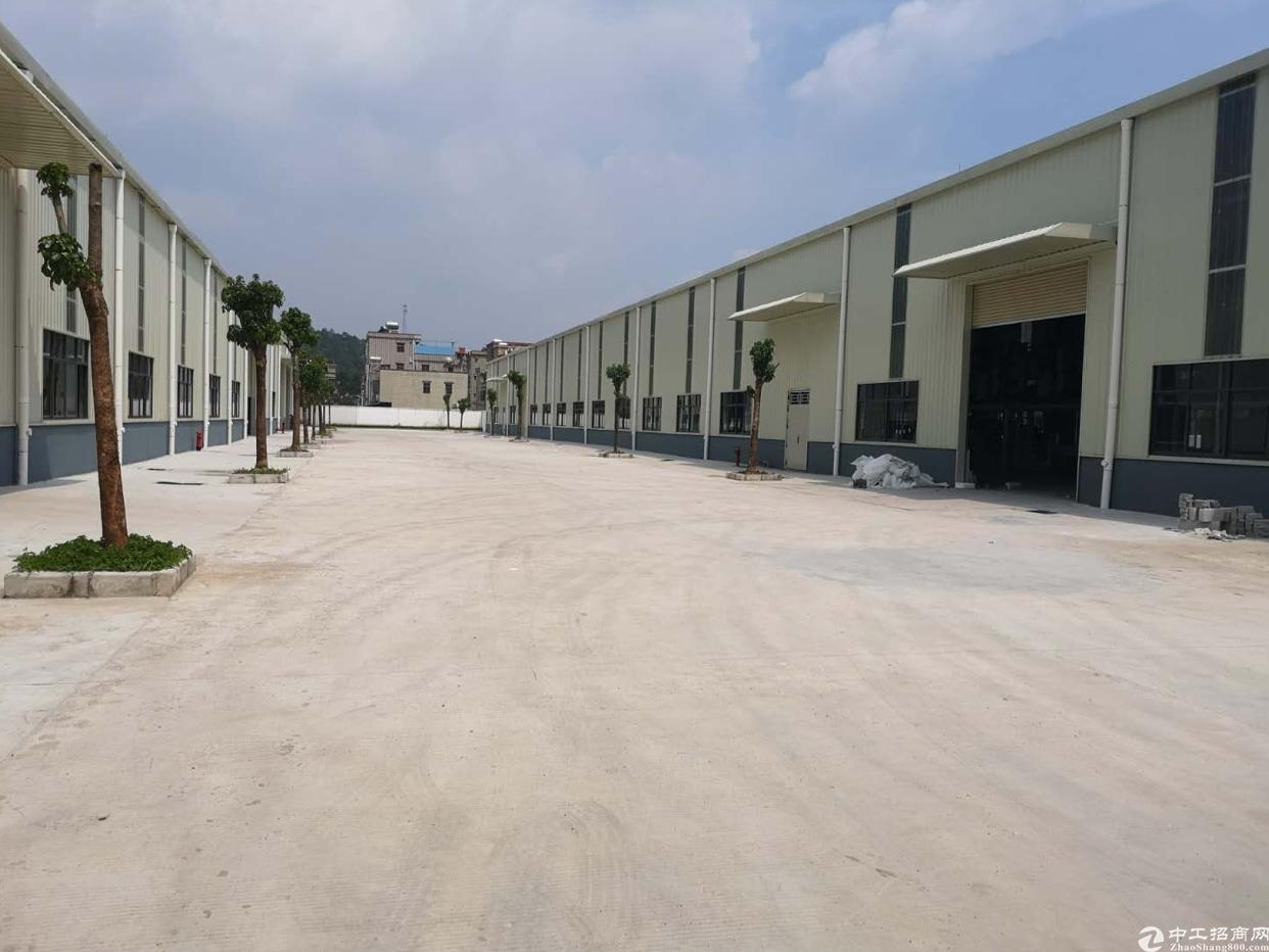 惠州市惠阳区2万平方钢构租金18元月