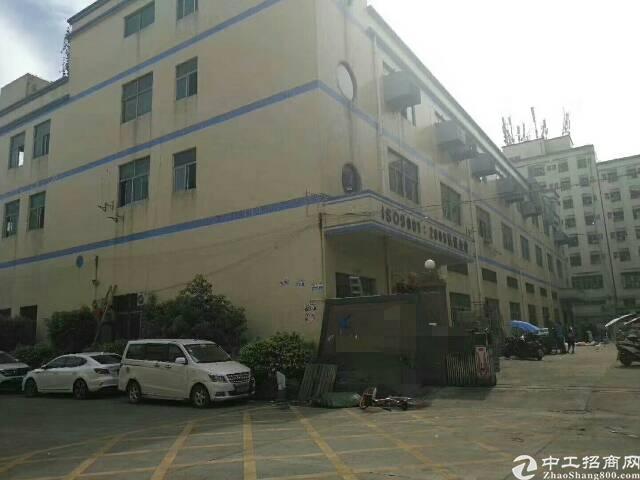 福永新出整栋6600平米独门独院已空