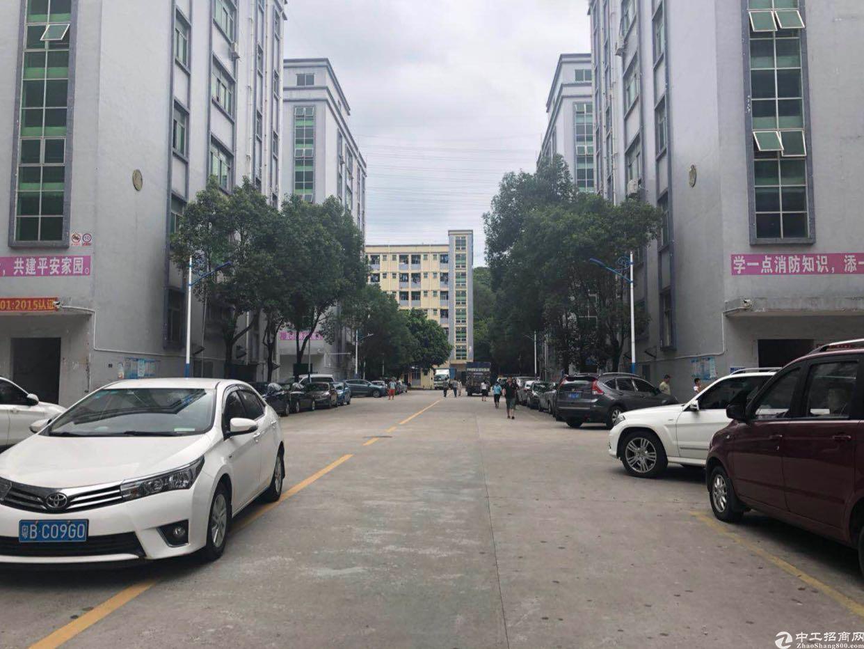 龙华新百丽原房东2300平无尘车间厂房招租,8.5的使用率