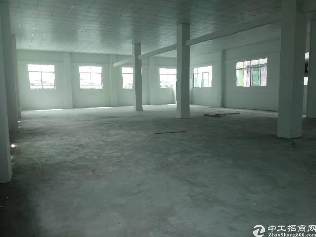 清溪镇大利管理区新出三楼650平精装修厂房出租