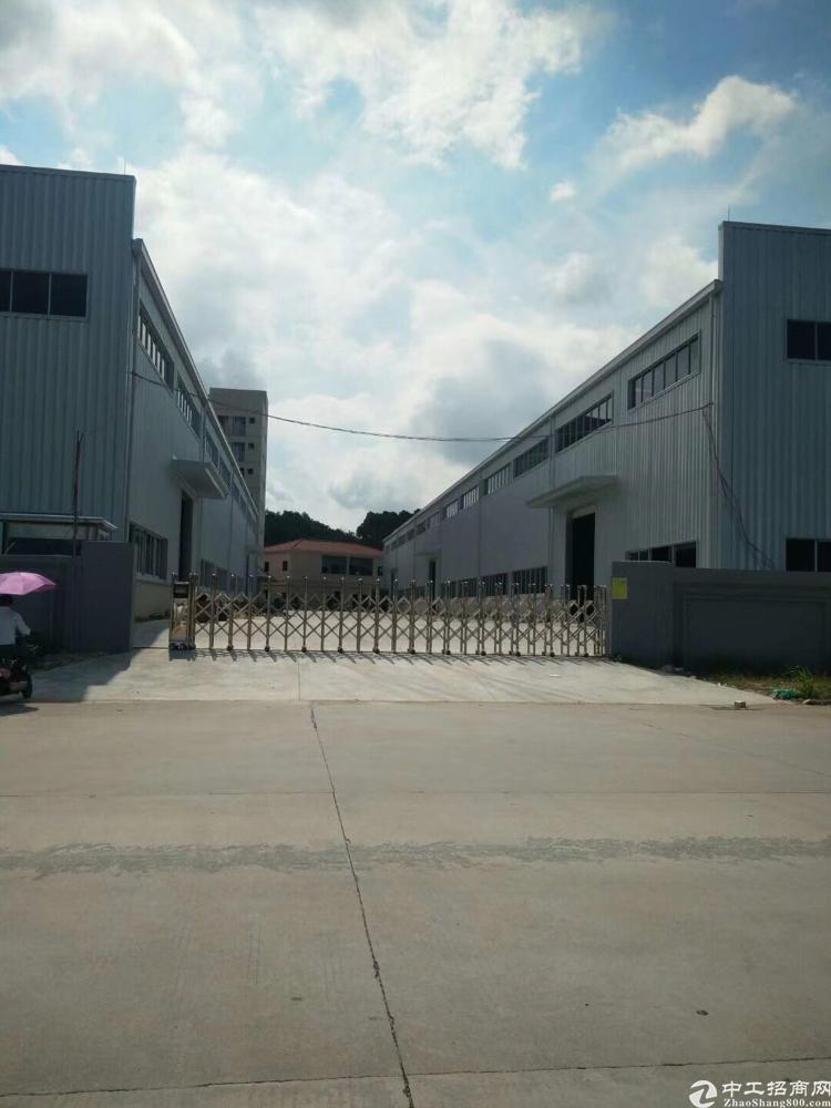 清溪高速出口全新独立钢构厂房 带牛角滴水10米