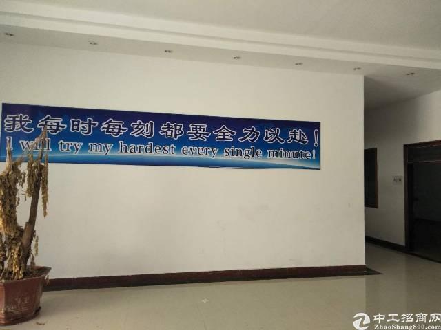 售超值东莞东城区厂房