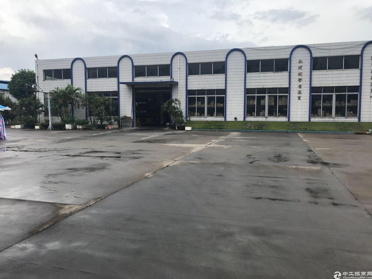 东莞市万江区独院原房东单一层钢构滴水9米厂房