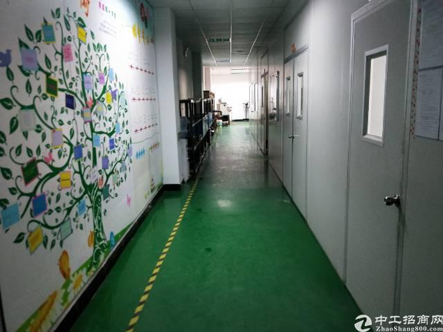 沙井沙三大型工业园新出3楼800平方厂房