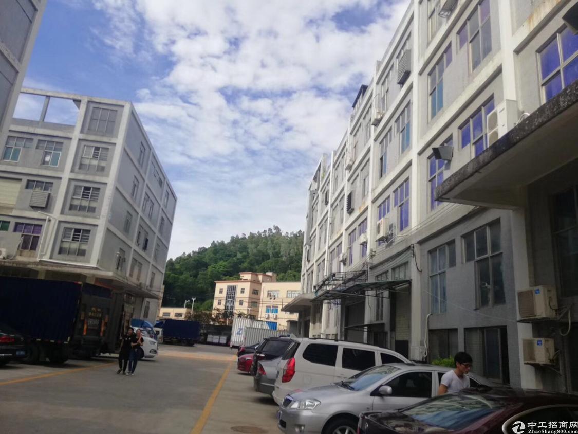 石岩北环新出一楼600平米层高6米厂房招租