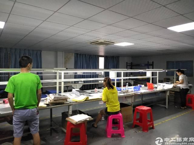 深圳沙井庄村工业园附近新出带装修1000平方厂房出租