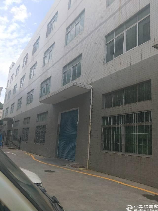 公明龙大高速口新出一楼厂房1500平方.