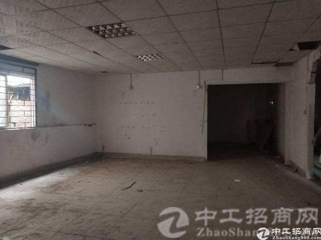 观澜最便宜的厂房 一楼钢构400平 报价16 可分租200平