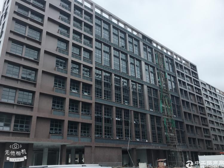 松岗镇中心35000平方红本高新产业园独门独院原房东厂房招租