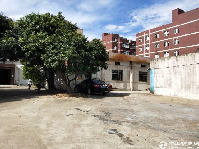 龙华天虹附近独院一楼500平方