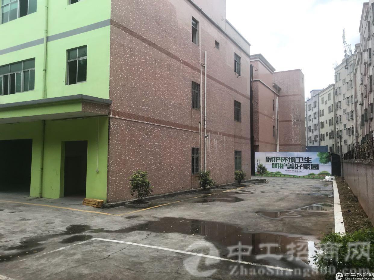 黎光精装修独院4200平方厂房招租