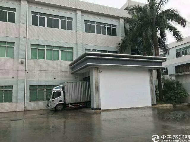 石排新出工业园独栋厂房,厂房1-3层标准厂房6500平