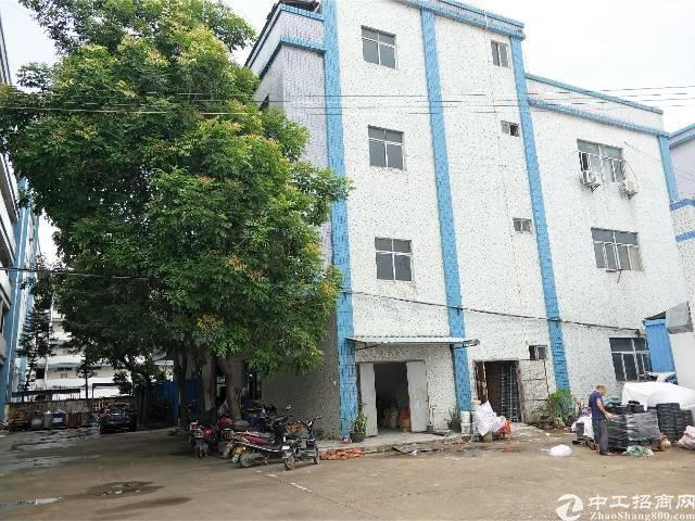 陈江镇  标准厂房出租1600平方  单层面积 800平方
