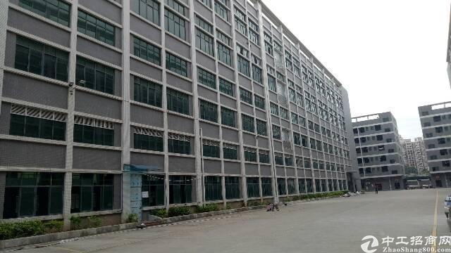 广州新塘新出原房东独门独院厂房出租。