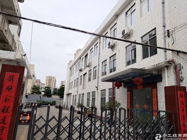 福永107国道旁新出独门独院3600平方实际面积出租