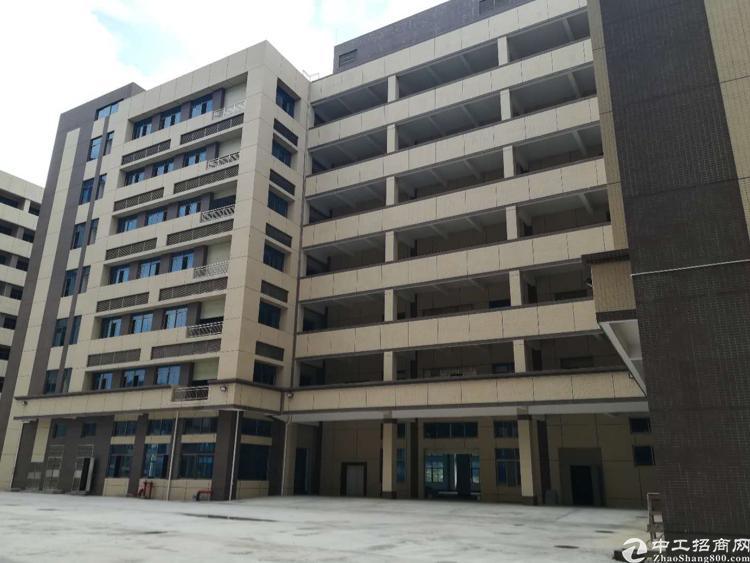 独门独院标准厂房,40000平,可分租,宿舍电按需