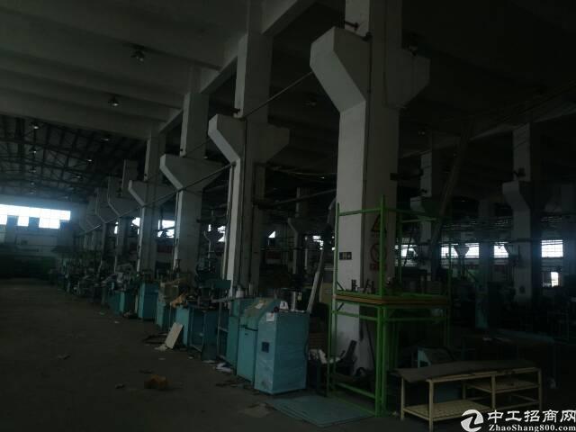4800平方米独栋12米钢构厂房出租