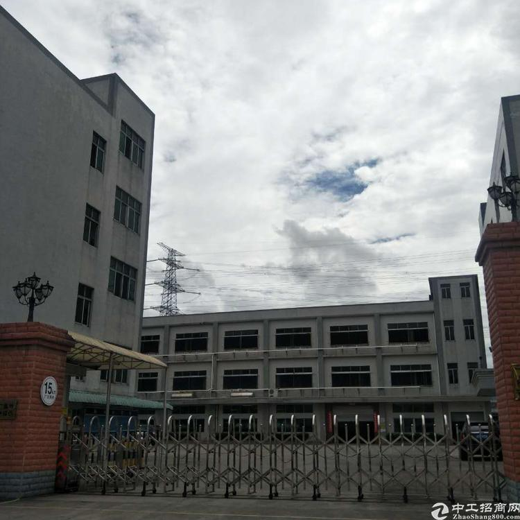 企石镇新出独院标准厂房1-3层12000平方米
