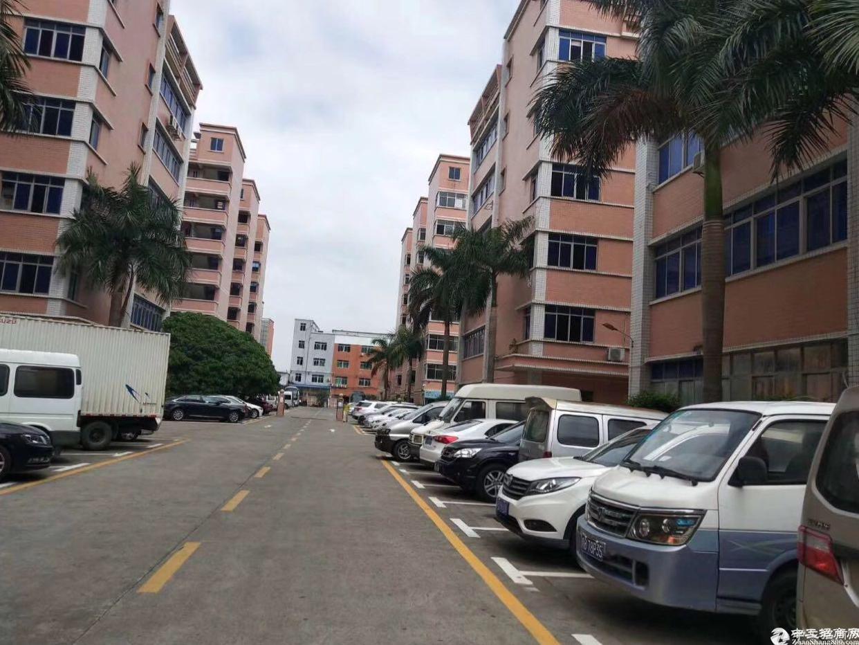 丹竹头可做服装厂房1700平方可分租招租中