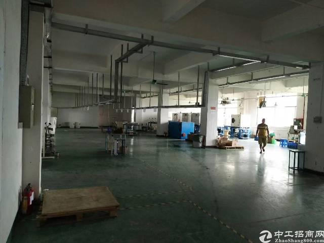 公明楼村新出五楼厂房1500平方一整层带有精装修