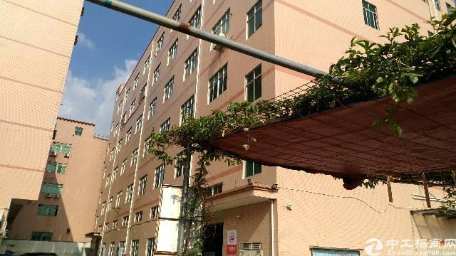 沙井新桥三工业区107国道附近8400平方独院厂房出租。