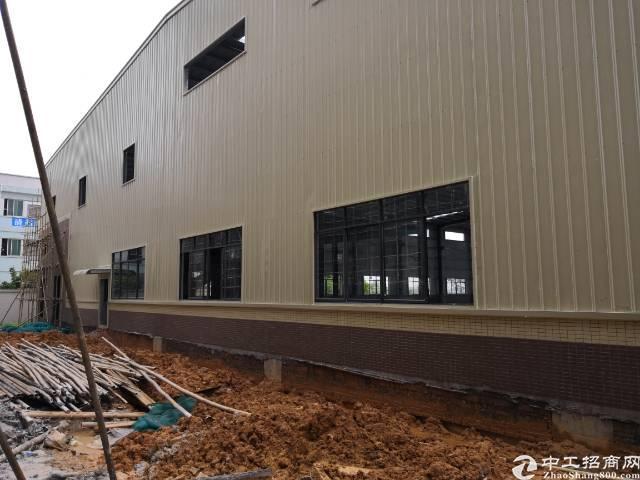 全新独院钢构厂房5000平方米火爆招租