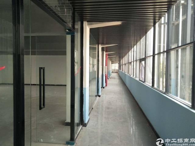 光明长圳田寮66平方起带装修办公室出租