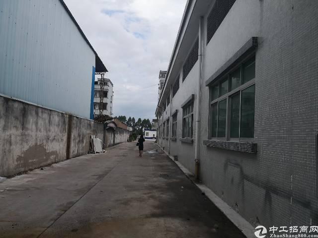 茶山镇刚空出单一层2000平方招租