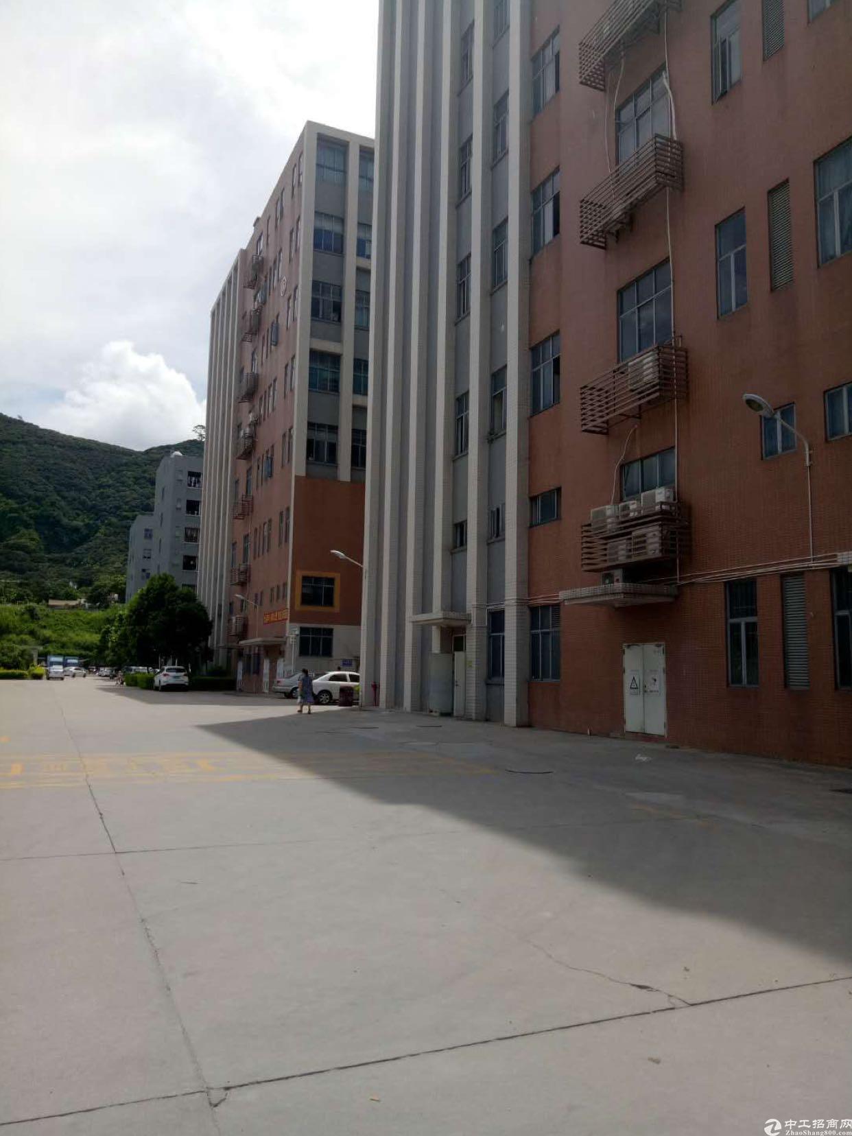 西乡银田工业区新出3楼2000平带装修厂房出租