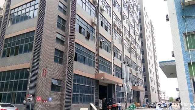 龙华大浪高新区,新出楼上1000平,带装修,消防喷漆,28元