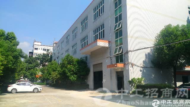 松岗龙大高速出口原房东独院2500平一楼7米高现成模具厂