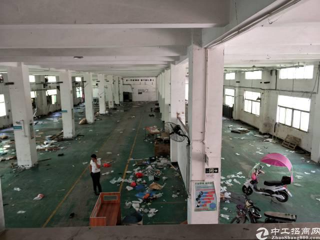深圳沙井万丰工业路靠近塘尾附近新出1楼2200平方厂房出租