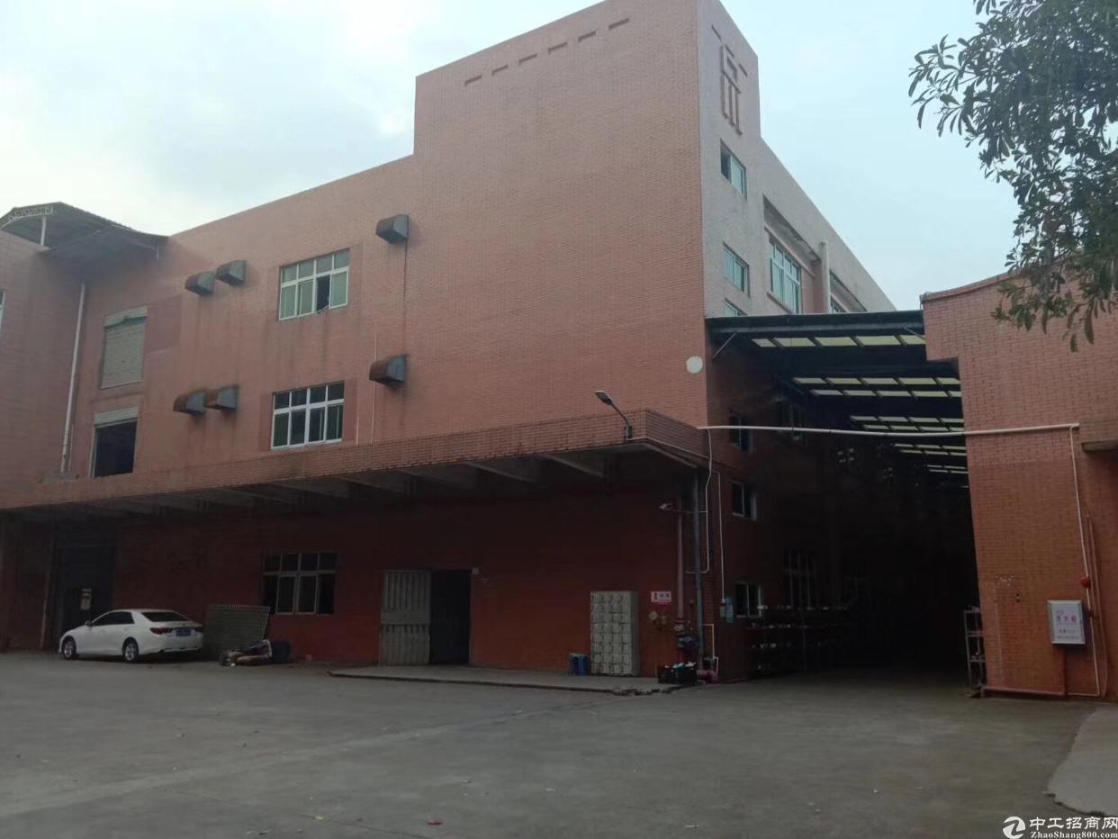 大朗工业园区带消防喷淋厂房出租一层3500平