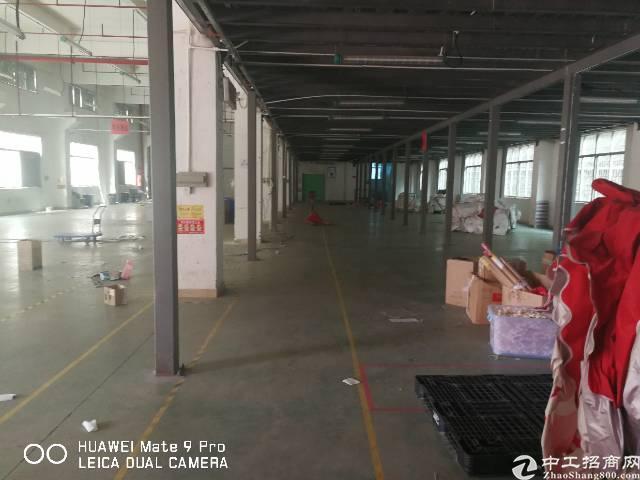 观澜福民西坑工业区新出一楼厂房带牛角,