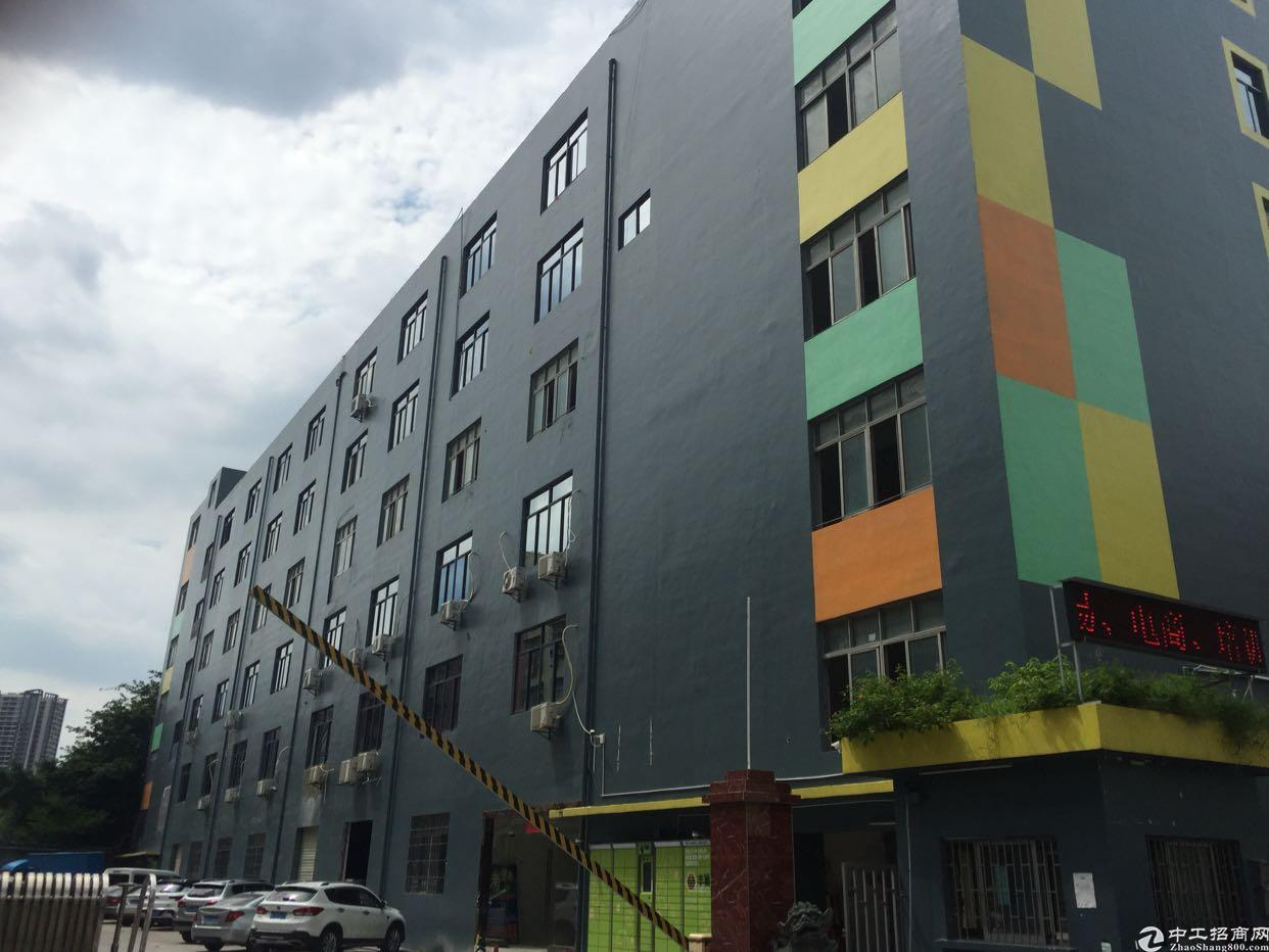 西乡银田工业区楼上1800平厂房出租