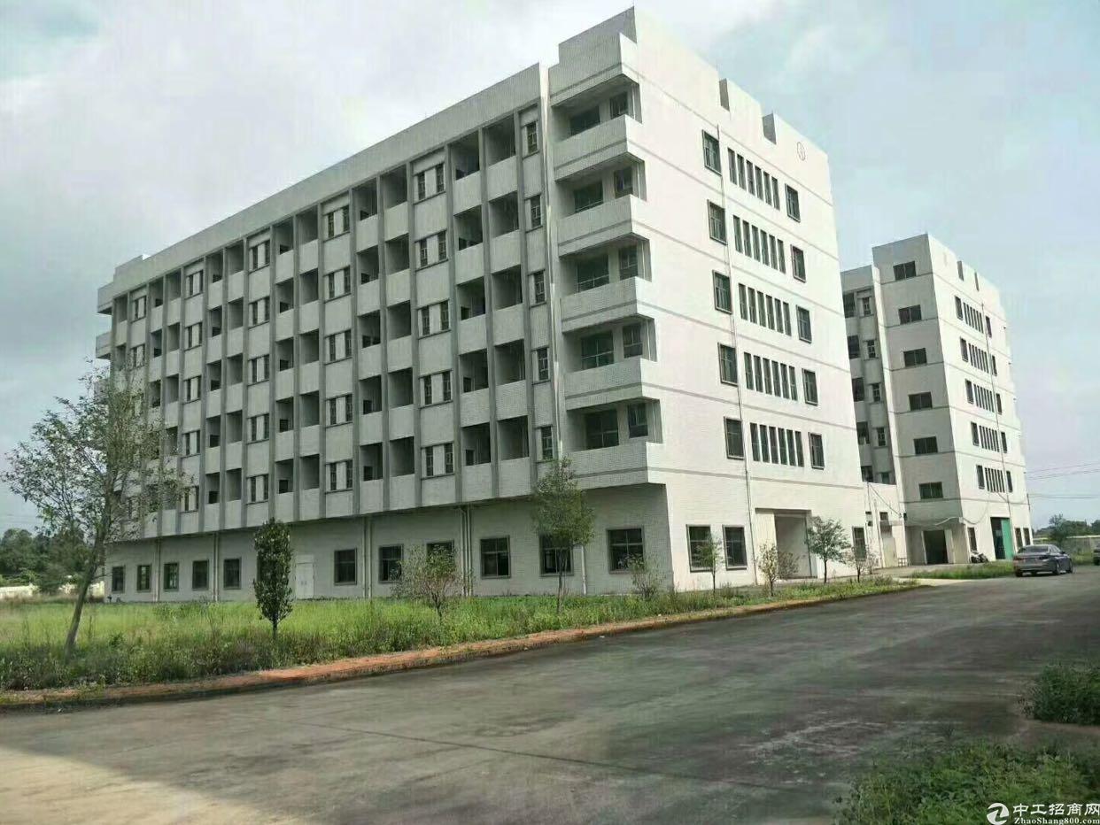 惠州独门独院标准厂房总占地面积10万平