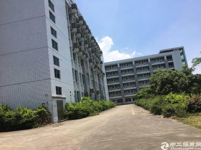 东莞周边环境优美,交通便利,适合做学校的厂房