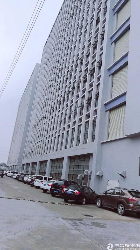 公明将石新出原房东一楼2400平