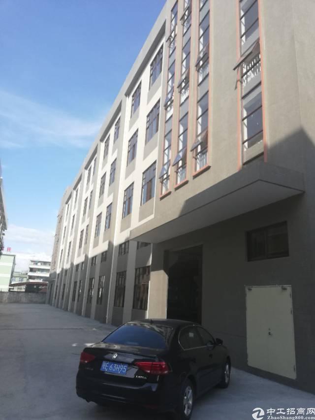 全新标准厂房1栋四层