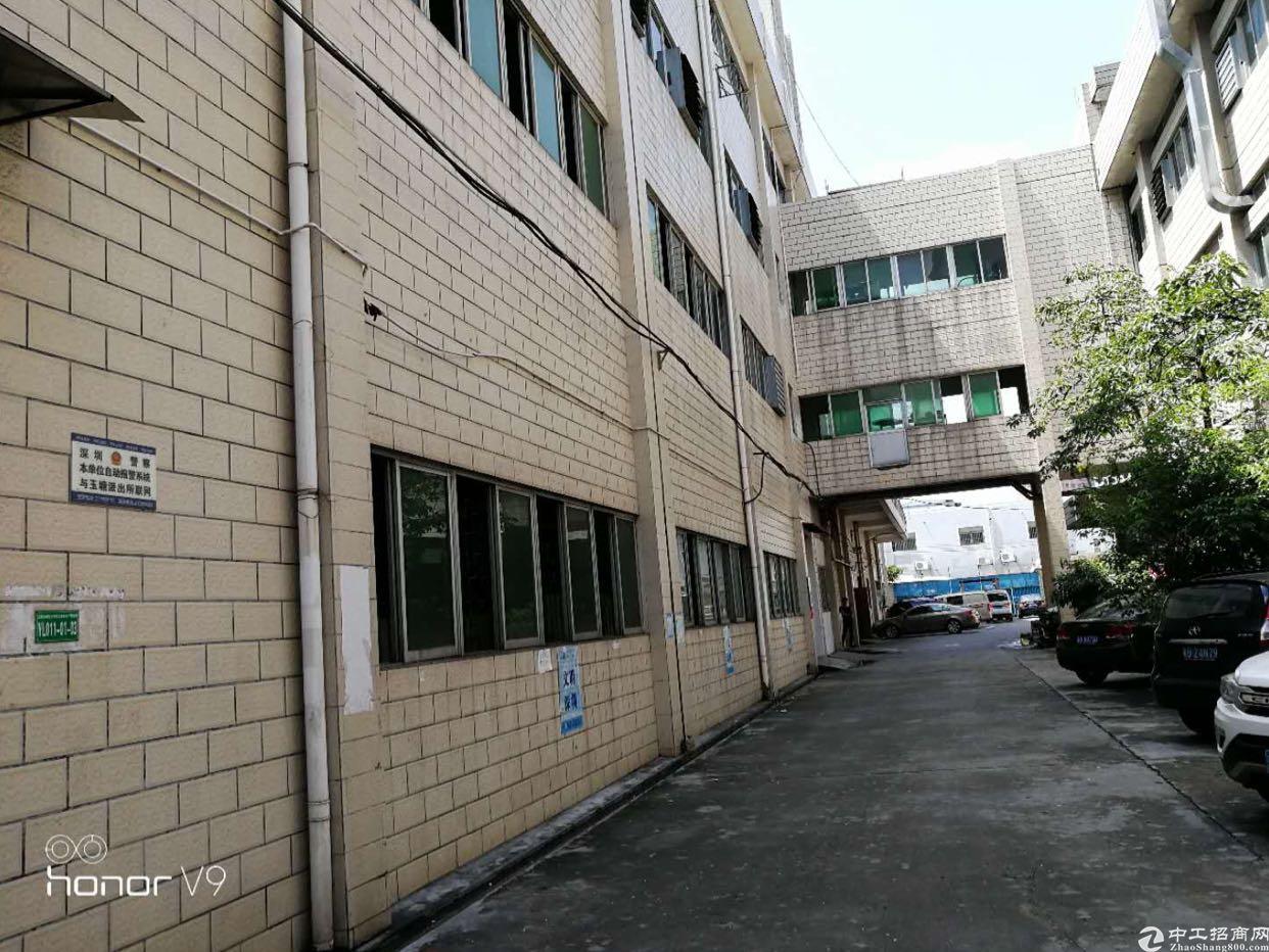 公明玉律独院厂房1-3层4800平方低价出租20