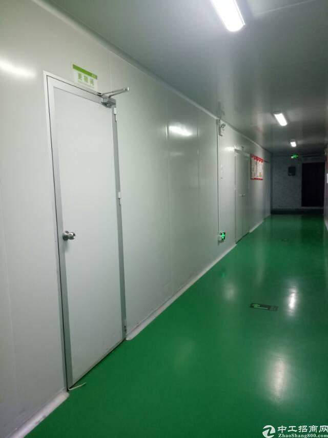 西乡黄田附近无尘车间厂房招租