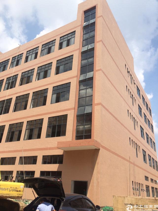 惠阳新圩新出楼上850平方,豪华装修,水电到位。