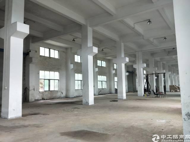光明经典独院标准一楼8米高3000平米空地约7000平米