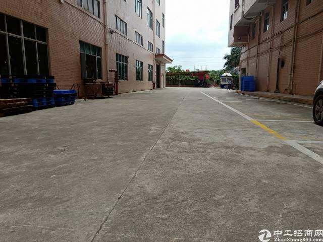 观澜福民靠龙华高速口一楼带牛角1600平28元