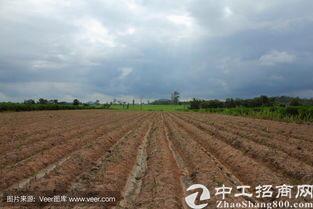 湖北省武汉市江夏区国有土地政府支持项目