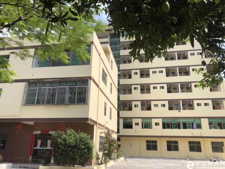 惠阳淡水标准厂房独院出租13000平方米