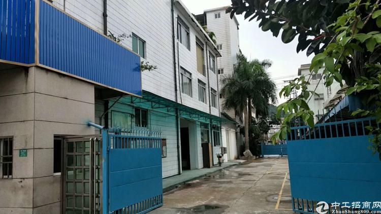 虎门镇最便宜独门独院总面积6500平方只租16块,超级便宜