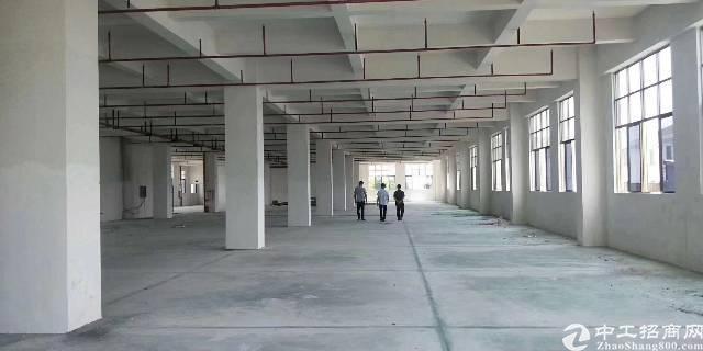 虎门镇,新出带红本,牛角,消防喷淋 全新重工业厂房共七层每层